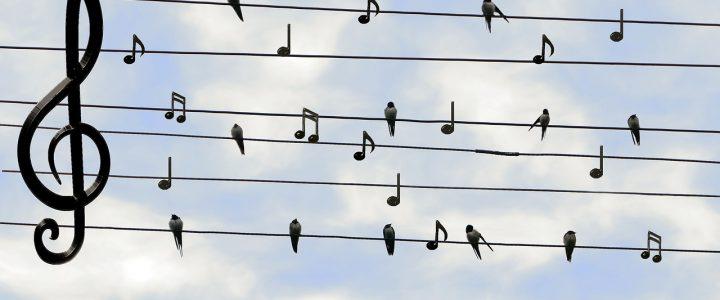 Vers la systématisation des chorales ?